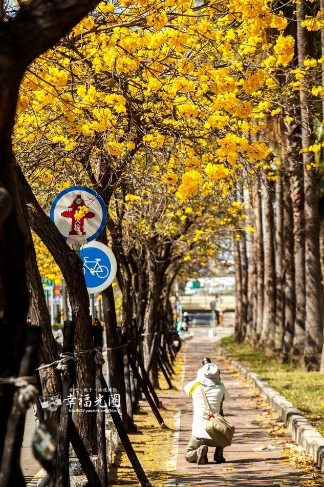 林森-三角公園11.jpg