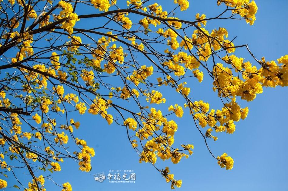 林森-東區衛生所21.jpg