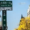 南寧街2014-10.jpg
