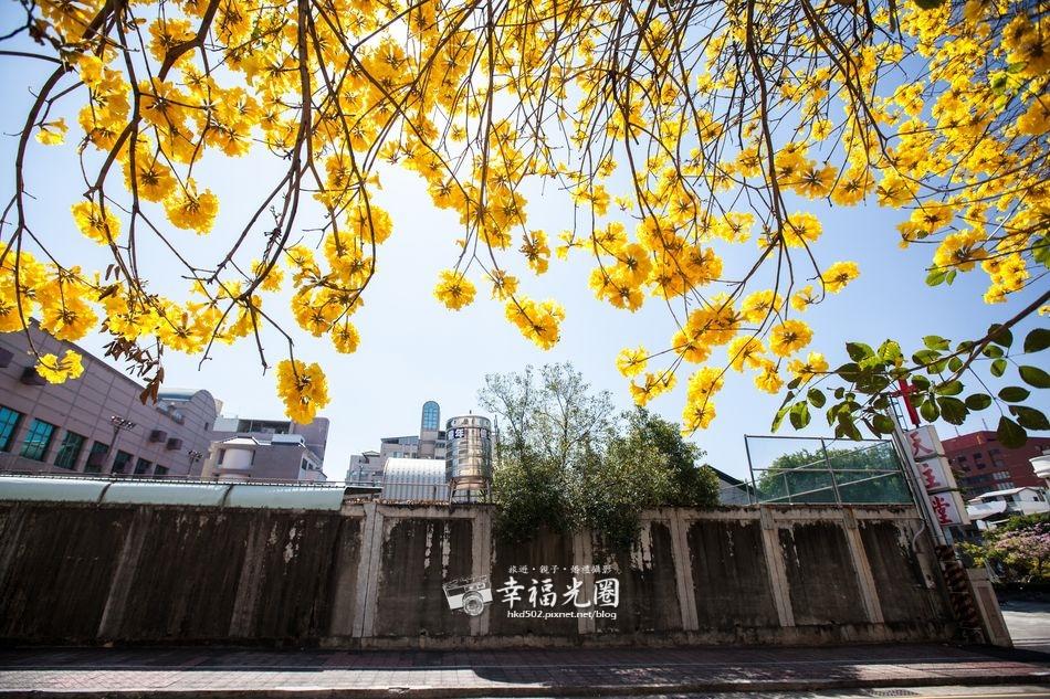 南寧街2014-19.jpg