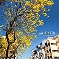 開山路2014-12.jpg