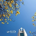 開山路2014-16.jpg