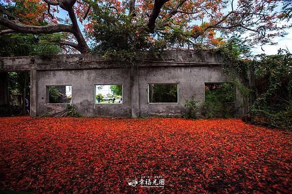 番茄蜜會社-119.jpg