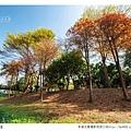 巴克禮公園-103.jpg