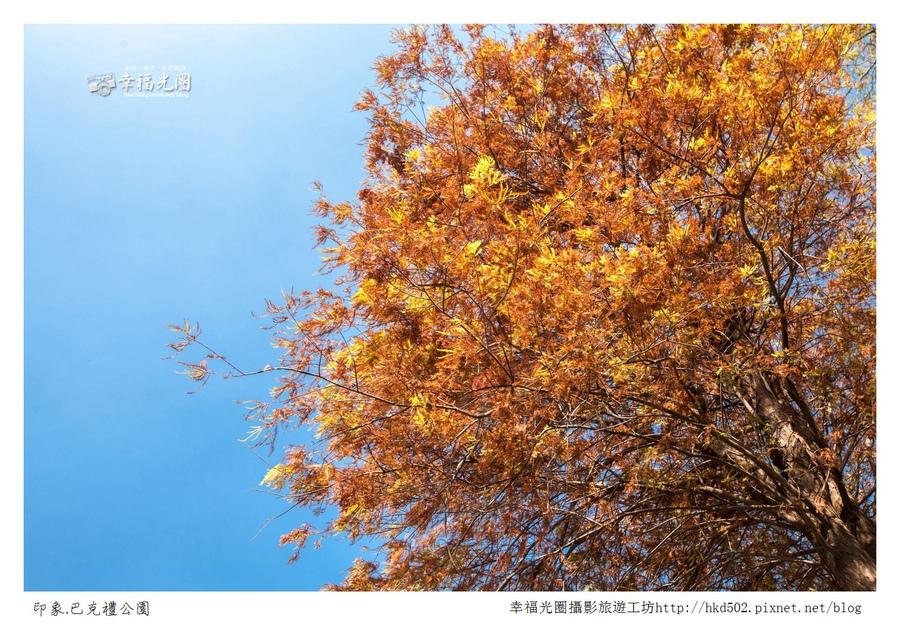 巴克禮公園-107.jpg