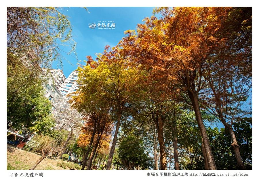 巴克禮公園-111.jpg