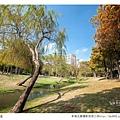 巴克禮公園-121.jpg