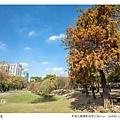 巴克禮公園-127.jpg