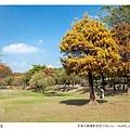 巴克禮公園-139.jpg
