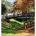 巴克禮公園-203.jpg