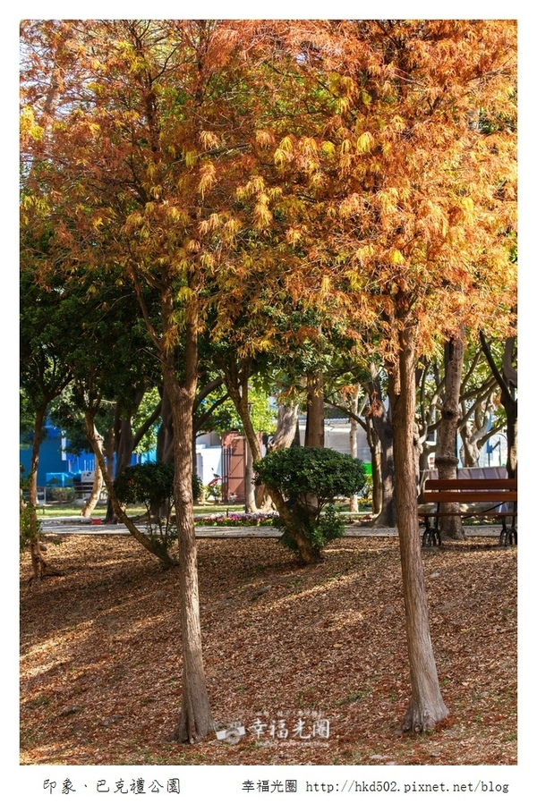 巴克禮公園-209.jpg