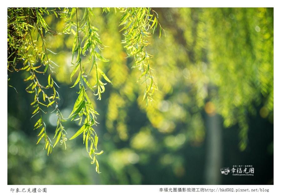 巴克禮公園-214.jpg
