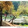巴克禮公園-216.jpg