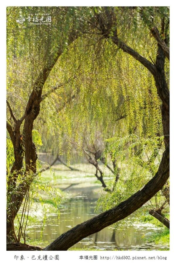 巴克禮公園-241.jpg