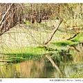 巴克禮公園-248.jpg