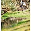 巴克禮公園-250.jpg