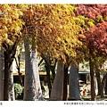 巴克禮公園-252.jpg