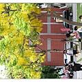 台南大學-03.jpg