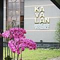 酒堡入口二旁有金車自己栽培的蘭花