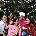 旁邊一群人等著要跟櫻花樹合影