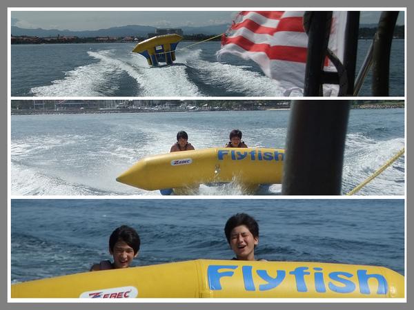 飛魚01.jpg