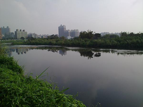 20101121346.jpg