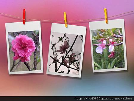 PhotoGrid_1390743761584