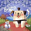 DODO方塊-Bulldog鬥牛犬相撲手-HOELEX(背景).JPG