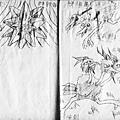 HOELEX神奇寶貝國中歷史37.jpg