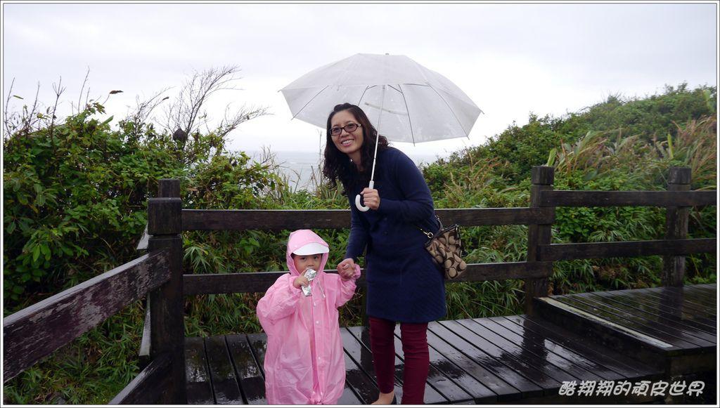 02石雨傘06.JPG