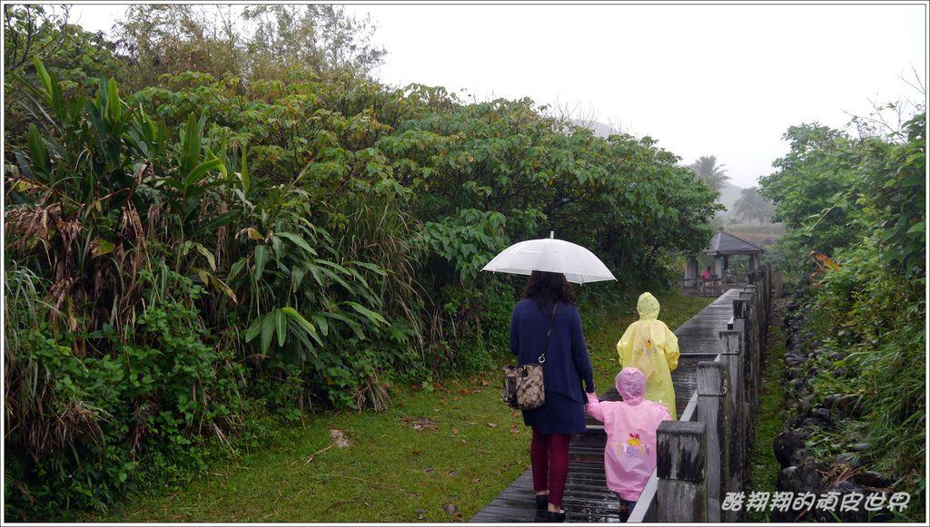 02石雨傘09.JPG