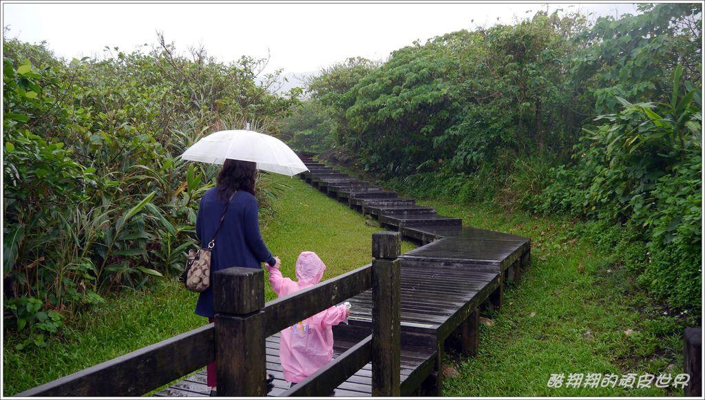 02石雨傘10.JPG