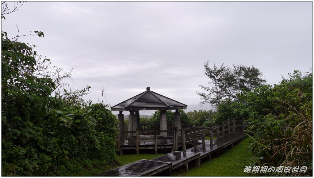 02石雨傘12.JPG