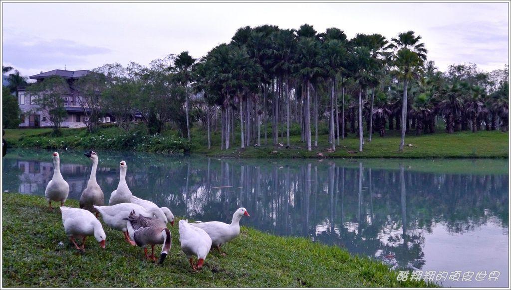 04夢幻湖07.JPG