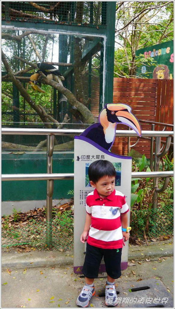壽山動物園05.jpg