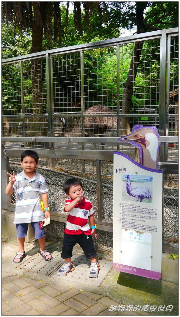 壽山動物園08.jpg