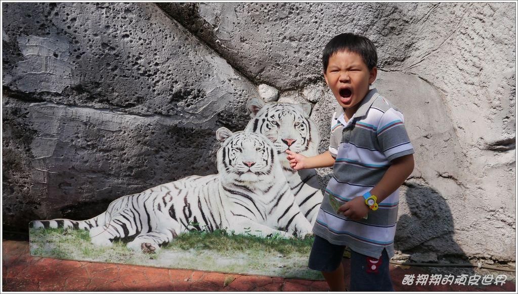 壽山動物園18.jpg
