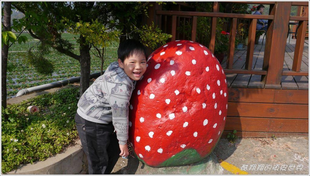 晶晶草莓園02.JPG
