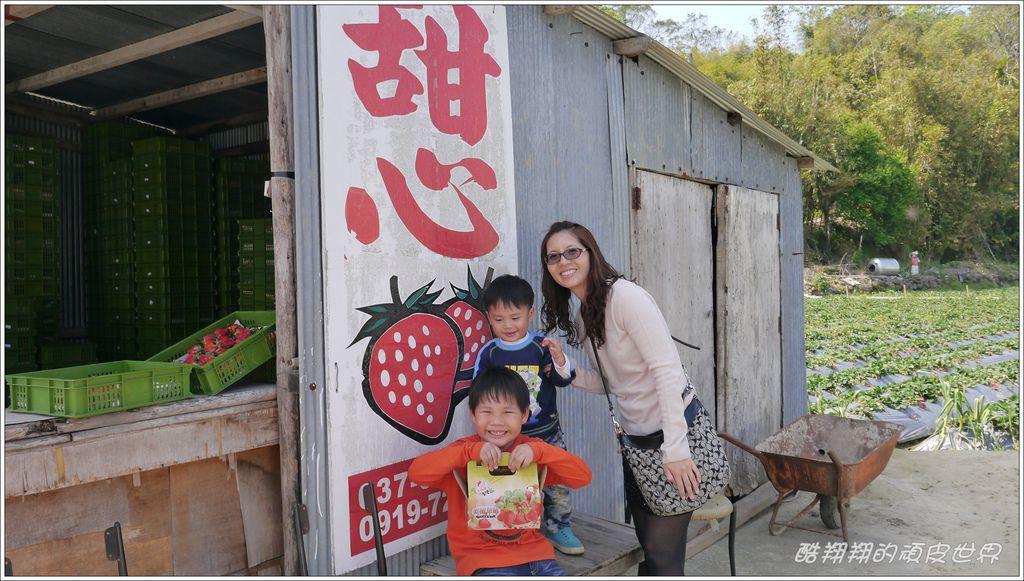 甜心草莓園10.JPG