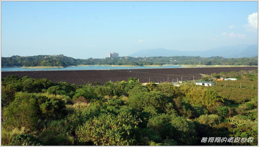 仁義湖岸09.JPG