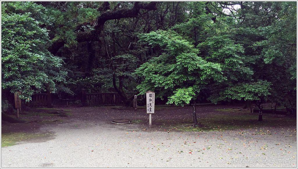 宮崎神宮-10.JPG