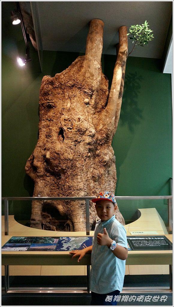 宮崎博物館-12.JPG