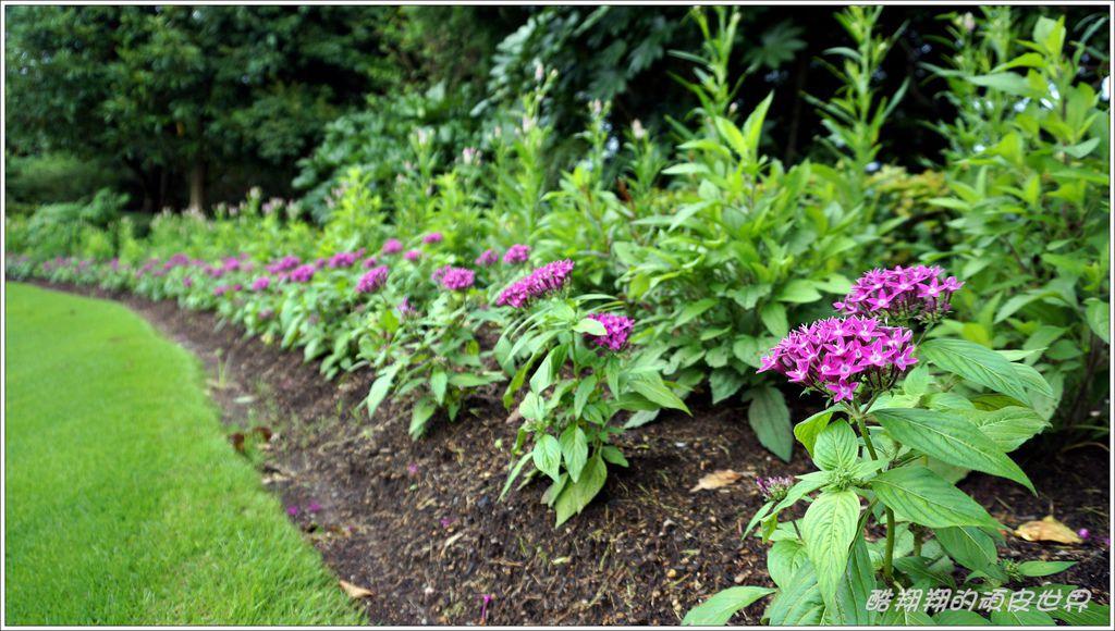 Florante花園-12.JPG