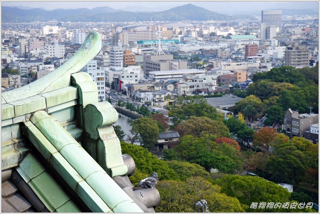 和歌山城-13.JPG