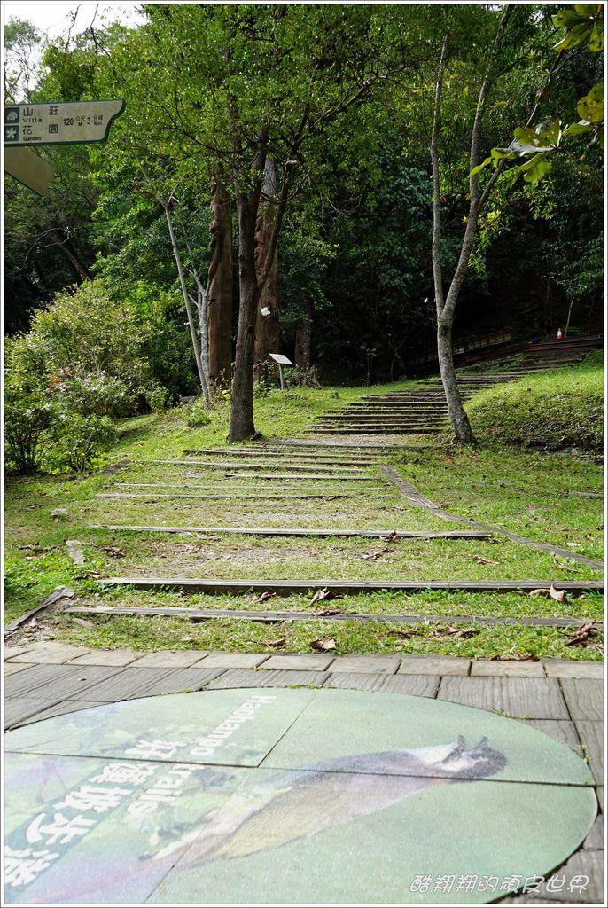 知本森林遊樂區-20.JPG