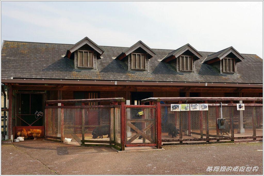 阿蘇牛奶牧場-12.JPG