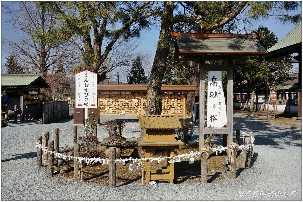 阿蘇神社-03.JPG