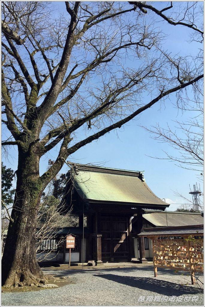 阿蘇神社-04.JPG