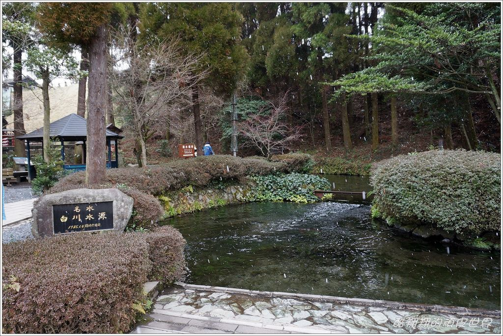 白川水源-06.JPG