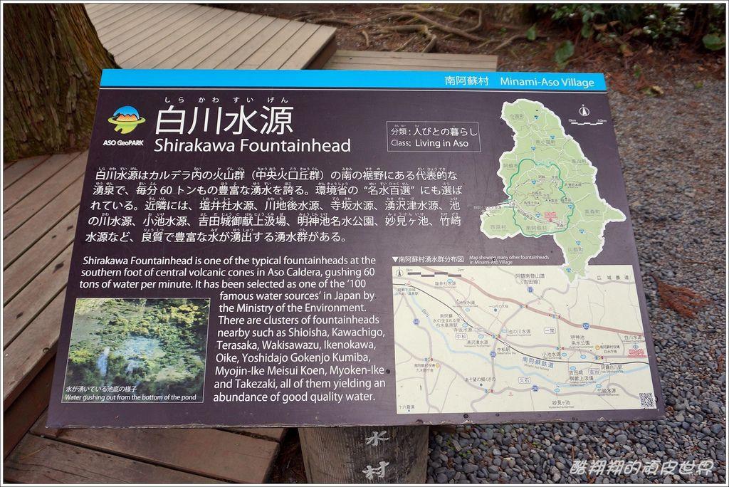 白川水源-10.JPG